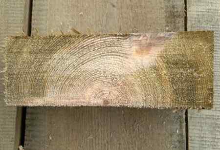 Правила защиты древесины антисептиком