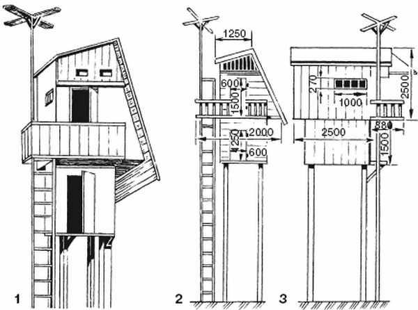 Строительство голубятни - виды, конструкция, внутреннее устройство